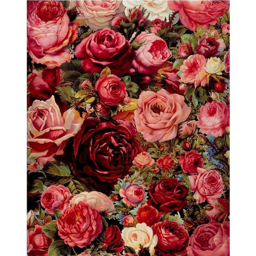 Red Flower Bed - DIY Painting By Numbers Kits