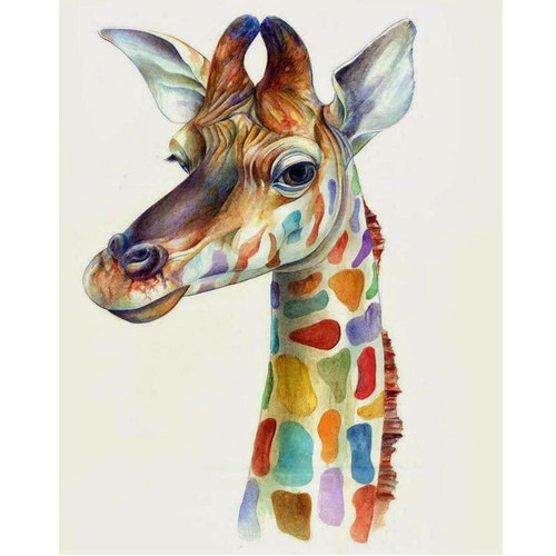 Fascinated Giraffe - DIY Painting By Numbers Kit