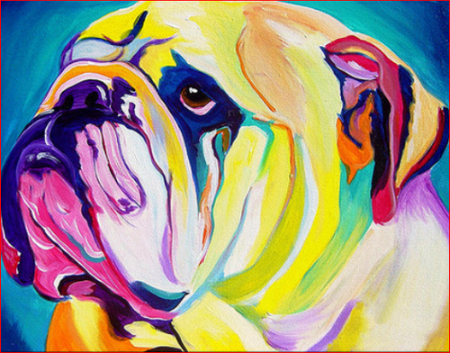 Color Bull Dog - DIY Painting By Numbers Kit
