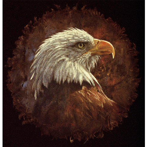 Eagle On Bark - DIY Painting By Numbers Kit