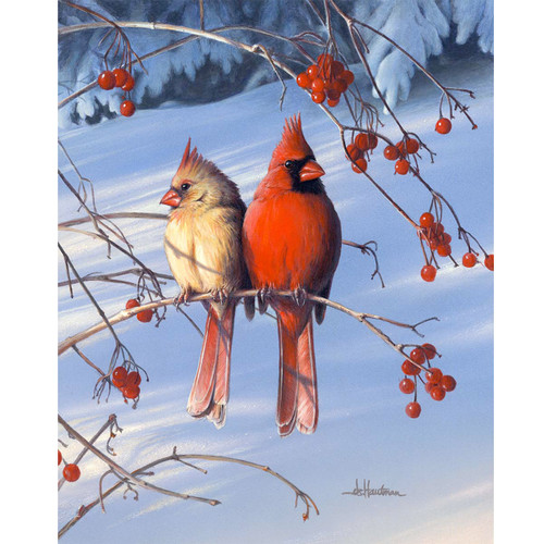 Cardinals - DIY Painting By Numbers Kit