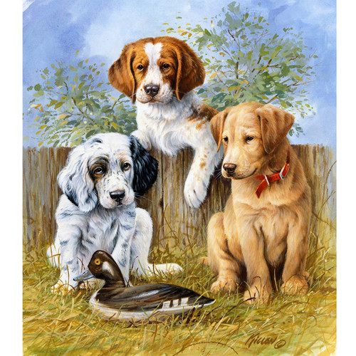 Sporting Trio Pups - DIY Painting By Numbers Kit