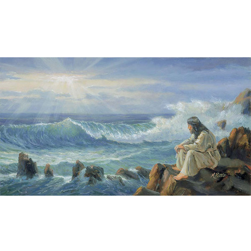 Messiah At Peace - DIY Painting By Numbers Kit