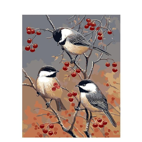 Birds On a Branch - DIY Painting By Numbers Kit