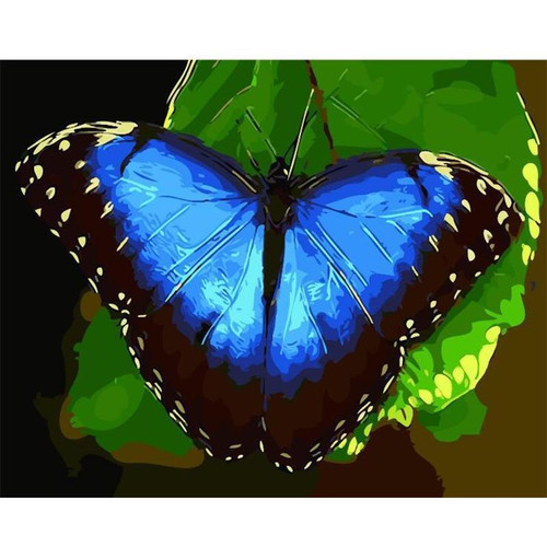 Blue Butterfly - DIY Painting By Numbers Kit