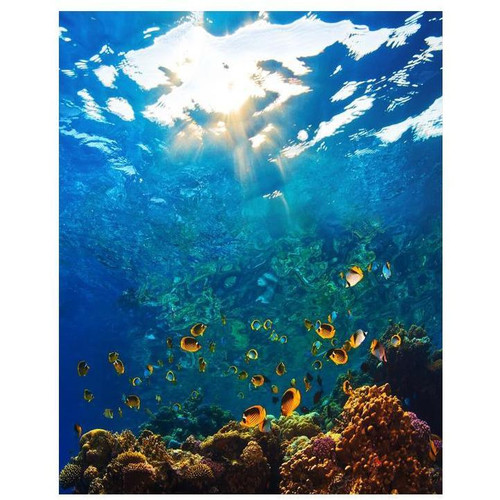 Underwater World - DIY Painting By Numbers Kit