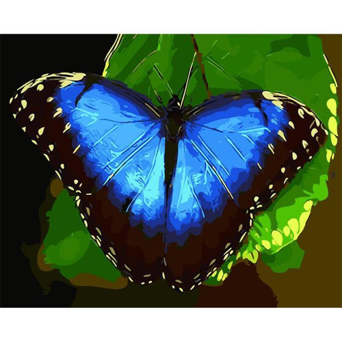 Acrylic Blue Butterfly - DIY Painting By Numbers Kit