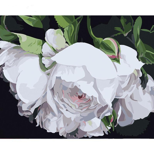 White Flower Painting - DIY Painting By Numbers Kit