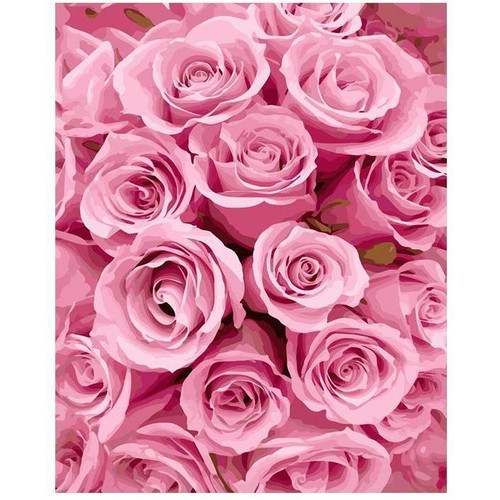Pink Roses - DIY Painting By Numbers Kits