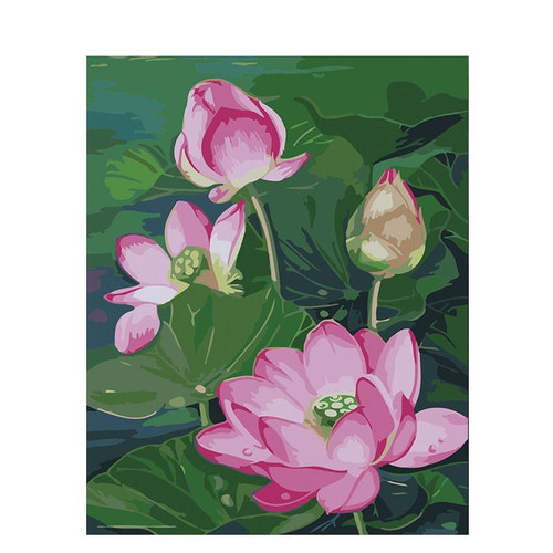 Lotus Flowers - DIY Painting By Numbers Kit