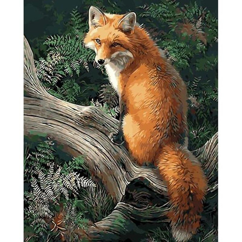 Cute Fox - DIY Painting By Numbers Kit