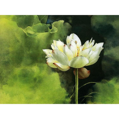 Beautiful Water Lily - DIY Paint By Numbers Kit