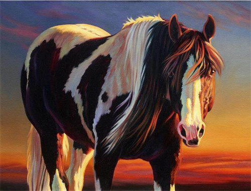 Horse Pose - DIY Painting By Numbers Kit
