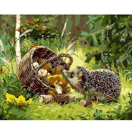 Hedgehog 40x50 DIY Paint By Numbers Kit