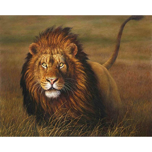 A Proud Lion - DIY Painting By Numbers Kit