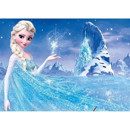 Elsa In Frozen - DIY Painting By Numbers Kit