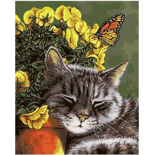 Comfy Cat - DIY Painting By Numbers Kit
