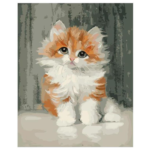 Adorable Sad Kitty - DIY Painting By Numbers Kit