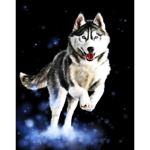 A Happy Husky - DIY Painting By Numbers Kit