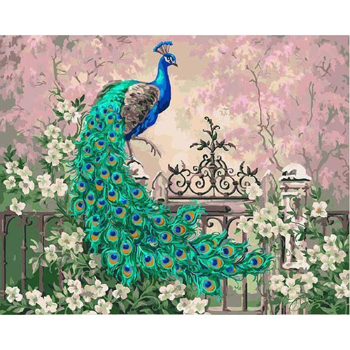 Peacock - DIY Painting By Numbers Kits