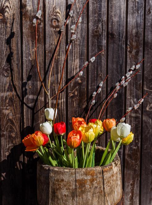 Tulip Flowers In Basket - DIY Painting By Numbers Kit