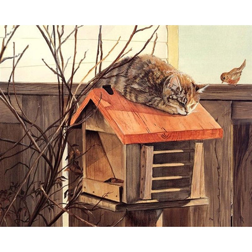 Cat On A Bird House - DIY Painting By Numbers Kit