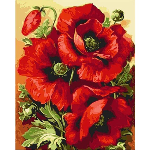 Red Flowers - DIY Painting By Numbers Kits
