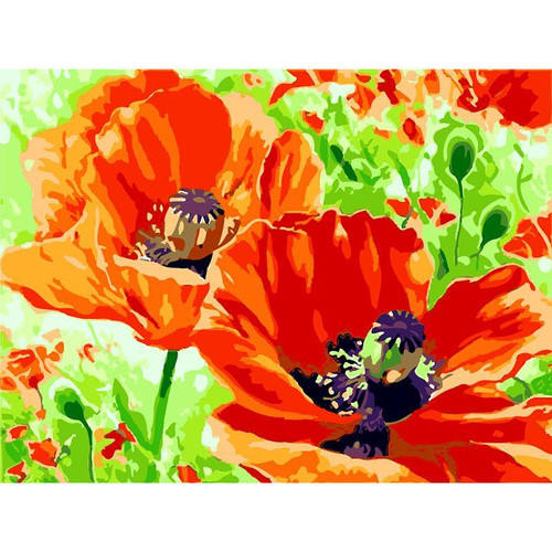 Acrylic Orange Flowers - DIY Painting By Numbers Kit