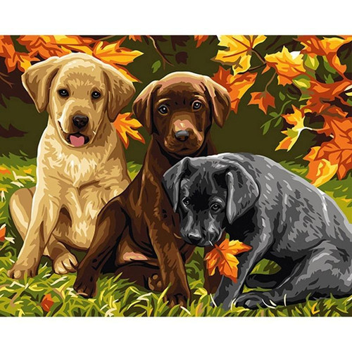Three Puppies - DIY Painting By Numbers Kit
