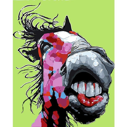 Crazy Horse - DIY Painting By Numbers Kit