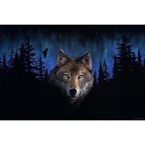 Night's Wolf - DIY Painting By Numbers Kits
