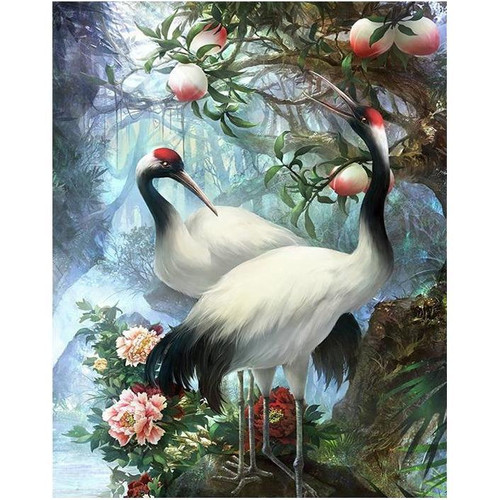 Beautiful Birds - DIY Painting By Numbers Kit