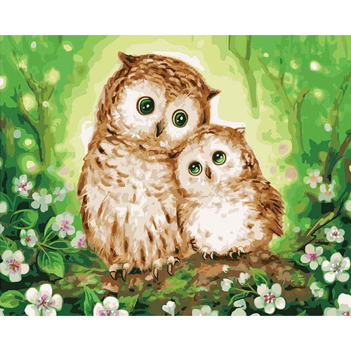 Cute Owls - DIY Painting By Numbers Kit