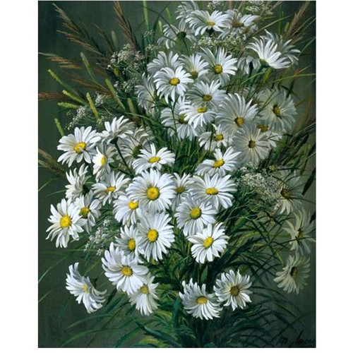 Beautiful White Daisies - DIY Painting By Numbers Kit