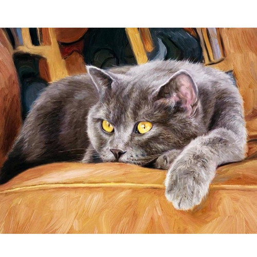 Yellow Eyed Cat - DIY Painting By Numbers Kit