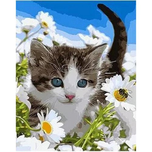 Cutest Cat Ever - DIY Painting By Numbers Kit