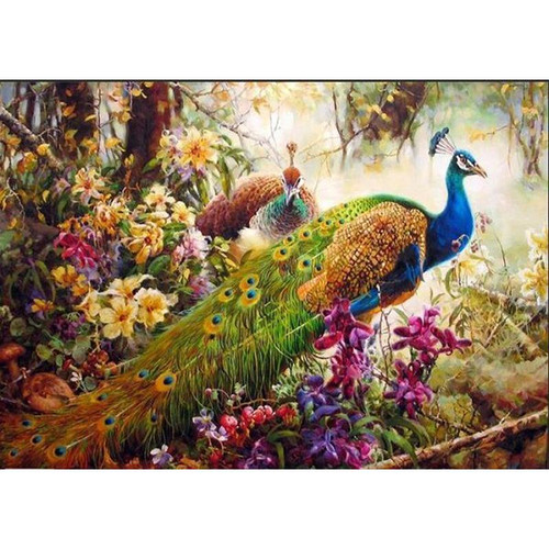 Beautiful Peacocks - DIY Painting By Numbers Kit