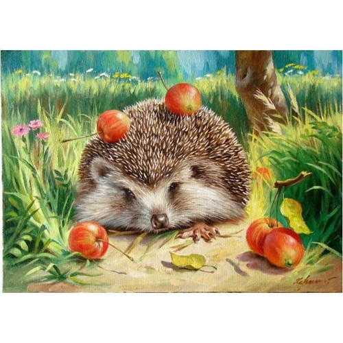 Apples On Porcupine - DIY Painting By Numbers Kit