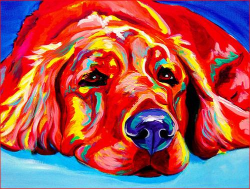 Sleepy Dog Colors - DIY Painting By Numbers Kit