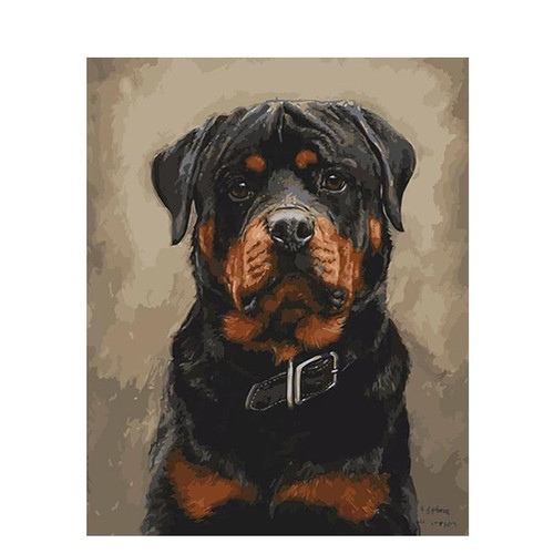 Innocent Rott - DIY Painting By Numbers Kit
