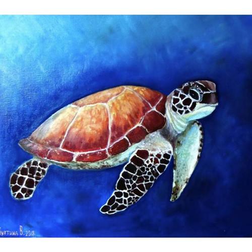 Turtle Underwater by Viktoria Kukhtina - DIY Painting By Numbers Kits