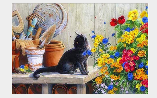 Cat In The Garden - DIY Painting By Numbers Kit