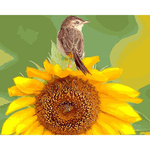 Little Bird On Sunflower - DIY Painting By Numbers Kit