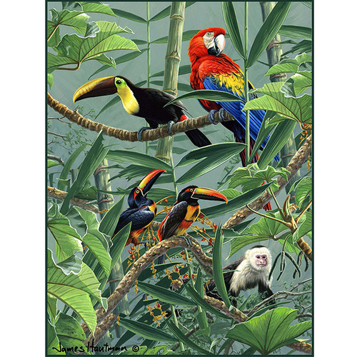 Rainforest Menagerie - DIY Paint By Number Kit