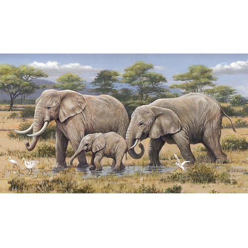 African Safari - DIY Paint By Number Kit
