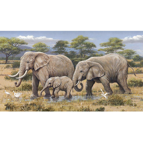 African Safari - DIY Paint By Number Kit