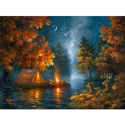 Wishing Upon A Star - DIY Painting By Numbers Kit