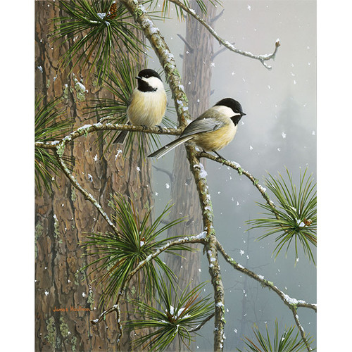 Red Pine & Chickadees - DIY Painting By Numbers Kit