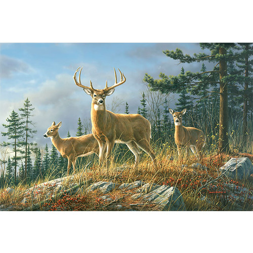 Autumn Whitetails - DIY Painting By Numbers Kit