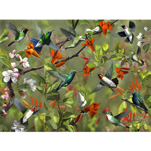 Hummingbird Party - DIY Painting By Numbers Kit